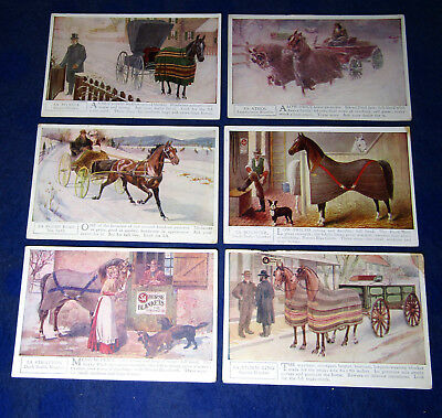 5A Horse Blankets - Lot of 6 Different Advertising Postcards