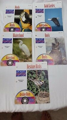 Corel Stock Photo CDs, Birds, Royalty Free PCD format Include Original Booklets
