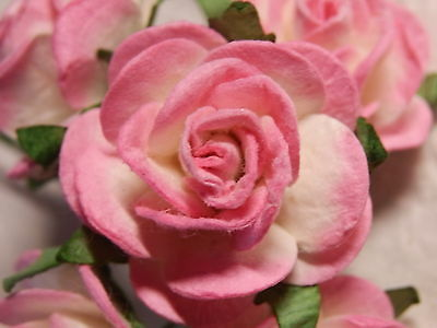 20 Paper ROSES 27mm PINK/WHITE MPRO27R/517  Wedding Table Stationery Decoration