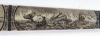 SCRIMSHAW SWORDFISH  BILL PEN-AND-INK  K. HENRY  SHIP  squid sperm whale whaling