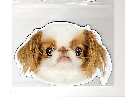 Japanese Chin 4 inch face magnet for car or anything metal     New