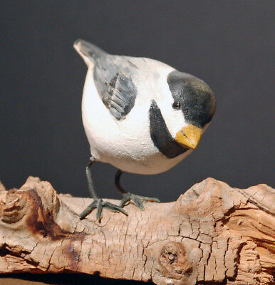 Carolina Chickadee, Hand Carved and Painted by RGT