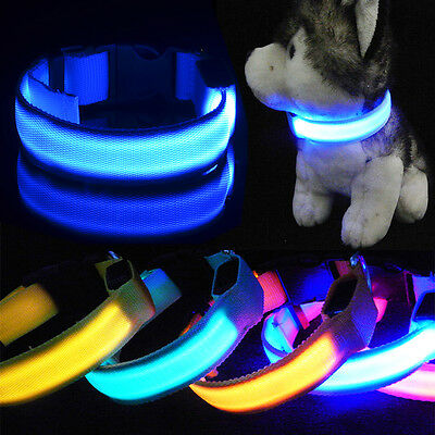 LED Dog Pet Collar Flashing Luminous Adjustable Safety Light Up Nylon Tag Xmas