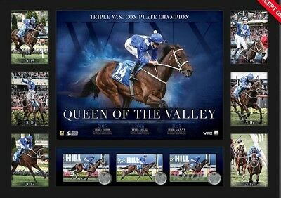 Winx Queen Of The Valley Three Time Cox Plate Winner Bowman Waller Horse Print