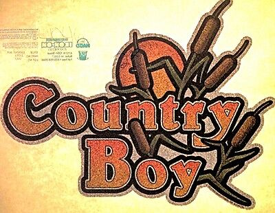 Vintage 1979 Country Boy Iron-On Transfer by Holoubek Full Glitter RARE!
