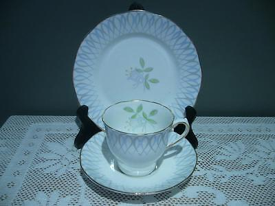 Salisbury Bone China Floral Trio - Cup Saucer Plate -  Vintage England - Gc