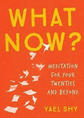 What Now?: Meditation for Your Twenties and Beyond, Shy, Yael
