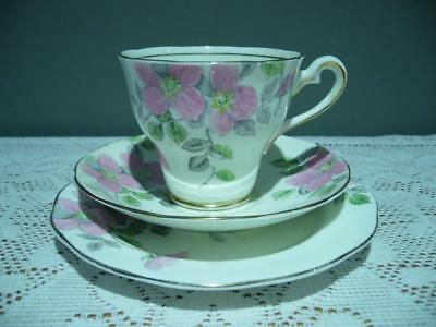 Salisbury China England Lovely Vintage 'wild Rose' Trio - Cup Saucer Plate - Vgc