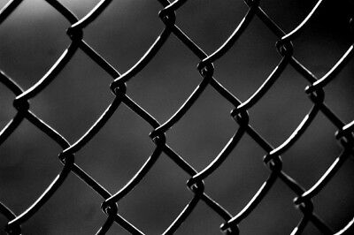 Black PVC Coated Chain-Link Fence/Cyclone Fence 1.8m*10m*50mm*50mm