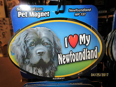 I Love My Newfoundland 6 inch oval magnet for car or anything metal  New
