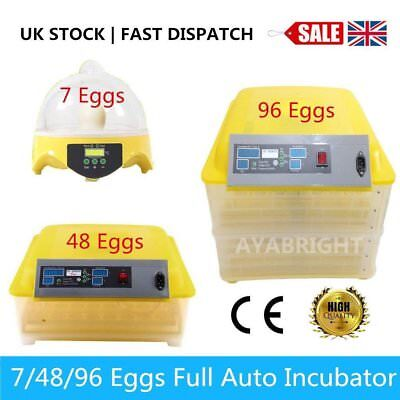Digital Temperature Control Chicken Poultry Duck Bird Egg Hatcher Incubator Tool