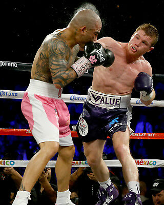 BOXING MUGS AND PHOTO PRINTS CANELO ALVAREZ 05