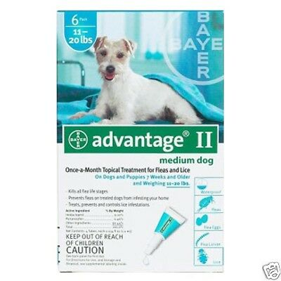 Advantage Flea Control for Dogs And Puppies 11-20 Lb 6 Month Supply TEAL-20-6