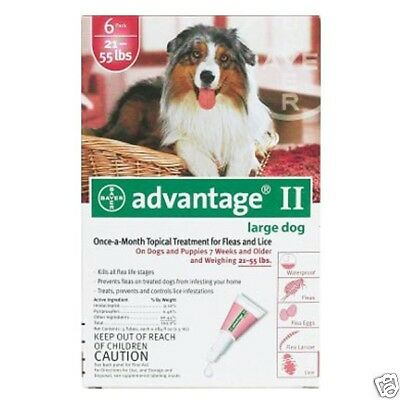 Advantage Flea Control for Dogs and Puppies 21-55 lbs 6 Month Supply RED-55-6