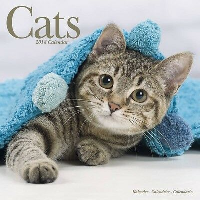 Calendrier Cats 2018
