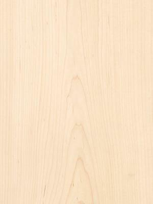 """Maple Wood Veneer 1/16"""" THICK Raw/Unbacked (3 pc - 7"""" x 24"""") 3 sq ft Total"""