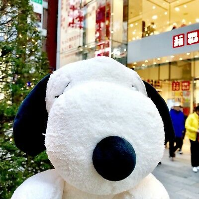 [Probably the last] Kaws x Uniqlo peanuts Ltd Plush M Big White Snoopy F/S New