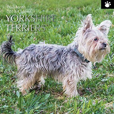 2018 Yorkshire Terriers Calendar by The Gifted Cute Dog Puppy Photography