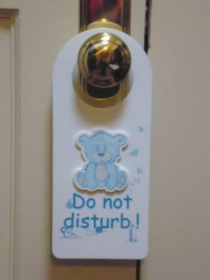 """baby Boy Blue Bear With The Words Do Not Disturb Door Hanger/sign"""