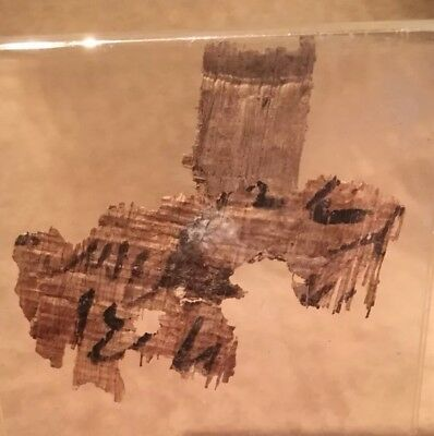 Ancient Authentic rare Egyptian Papyrus Fragments 300BC