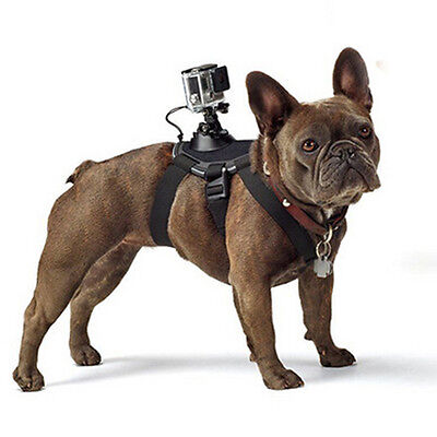 GoPro accessories Dog strap Harness belt for Gopro Hero 7/6/5/4/3/xiaomi yi/sj