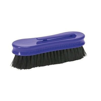 "Weaver Small Pig Face Brush with Plastic Handle 1-1/2"" x 5"", Purple"