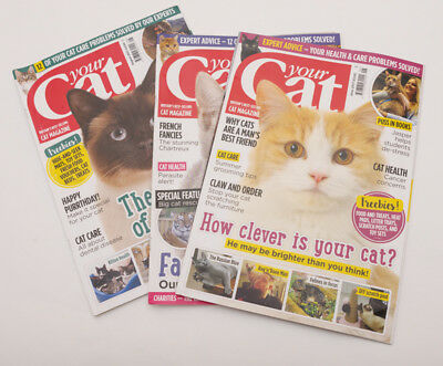 3 X Your Cat Magazines June 2017 July 2017 August 2017  In Very Good Condition
