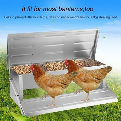 4.7kg Automatic Aluminum Chicken Feeder Treadle Chook Poultry Self Opening HK