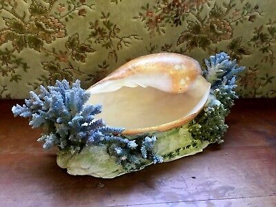 Vintage Shell and Coral Trinkets Dish Kitsch Bowl Holder Mid Century Large