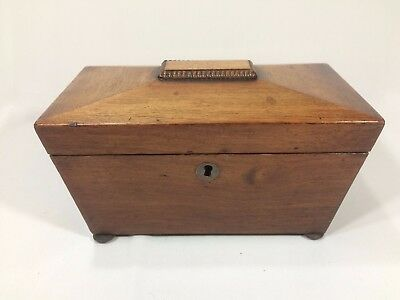 Antique Regency Sarcophagus Rosewood Tea Caddy - Two Compartments With Lids