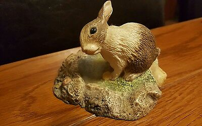 John Beswick Studio Sculptures of a Rabbit at water. BRIGHT -EYES. Immaculate.