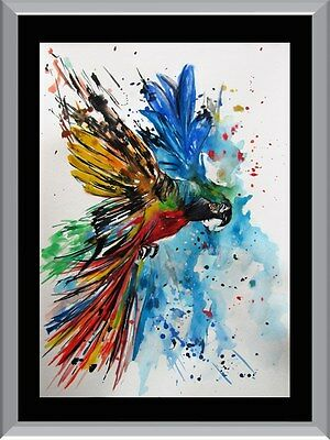 Watercolour Parrot A1 To A4 Size Poster Prints