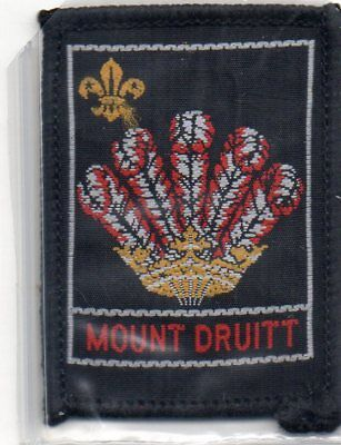 N S W  Scout Badge    Mount Druitt