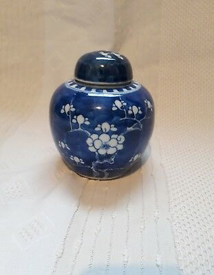Antique Chinese Porcelain Ginger Jar and Cover. Prunus Decoration Kangxi
