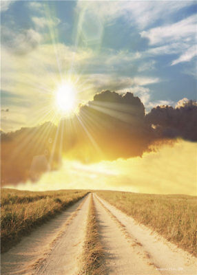 SUNRISE PHOTOGRAPHY Backdrop Outdoor Road Vinyl Photo Backgrounds