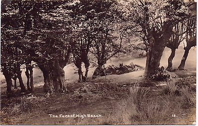 Epping  The Forest High Beach RP Postcard Essex Postmark Epping 1916 To C Grout