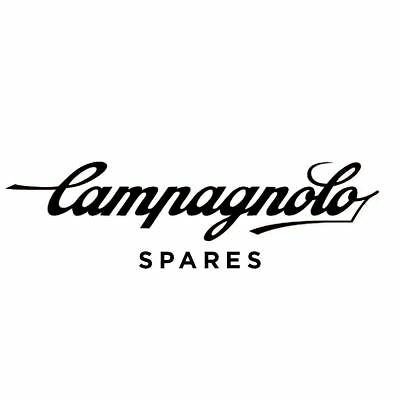 Campagnolo Disc Brake Bleeding Kit & Fittings For Professional Grade Maintenance