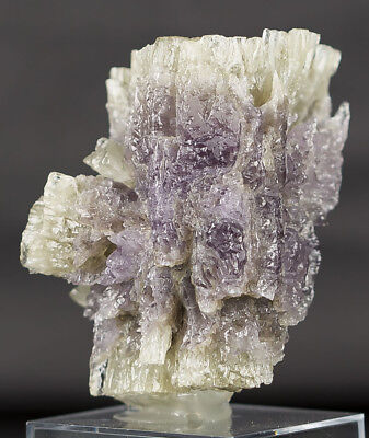 WoW ! Purple Yellow Aragonite Specimen From Spain
