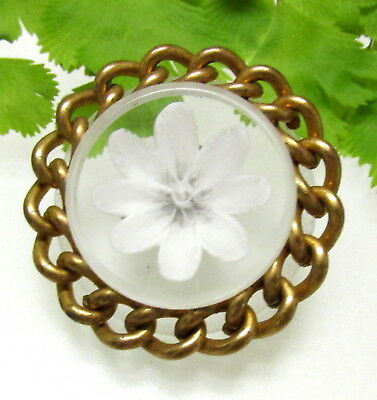 Nice Vtg. Reverse Carved Lucite Flower Button W/ Metal Chain Border D39