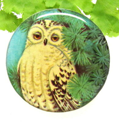 Gorgeous Signed Shirley Burgess Studio Button With Snowy Owl D47