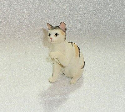 American shorthaired - blue cream tabby cat figurine