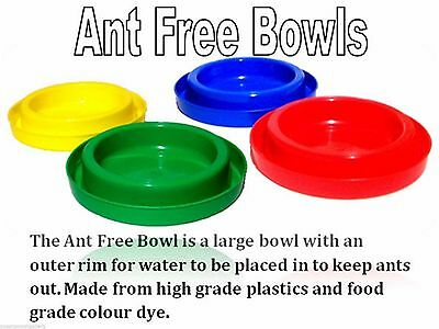 Ant Free Coloured Plastic Bowls for Cats & Small Dogs - Australian Made