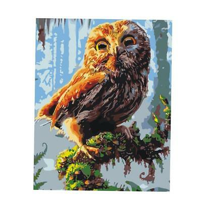 DIY Oil Painting By Numbers Kit Drawing On Canvas Home Office Art Decor Owl