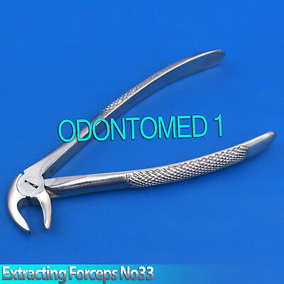 Surgical dental Tooth Extracting Forceps Lower Jaw No.33 Extraction Tools