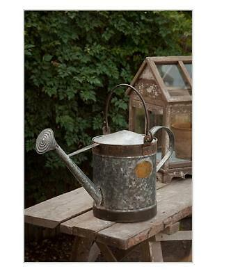 Galvanized Watering Can~Extra Large~ planter Garden~Vintage Style Home Decor