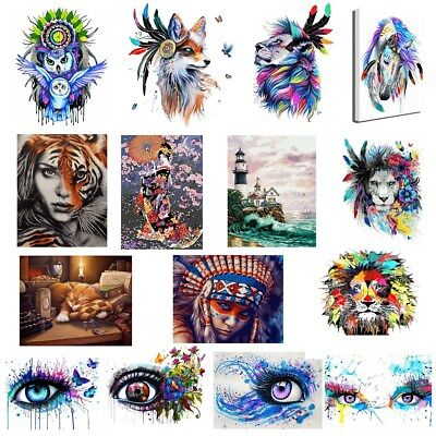 Framed 40*50cm Animal Eye Lion Paint by Number Kit Painting On Canvas DIY Craft