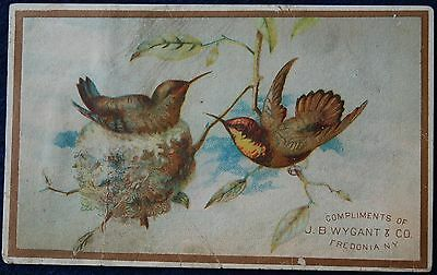 1890's MADAME GRISWOLD SKIRT SUPPORTER CORSETS TRADE CARD WYGANT CO FREDONIA NY