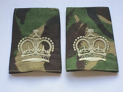 WARRANT OFFICER 2, CSM ,Shoulder Marks DPM, Dated 2009, British Army