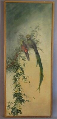4ft LG Antique VICTORIAN Era LESSER BIRDS of PARADISE Old OUTDOOR Oil PAINTING