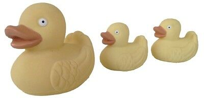 Real Rubber Duck Family | Natural Rubber Duck Toys | Family of Duck Toys